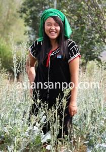 ミャンマー シャン州 タウンヨー族