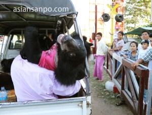 ミャンマー タウングー 熊