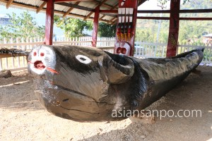 ミャンマー ラヘー ナガ族 博物館