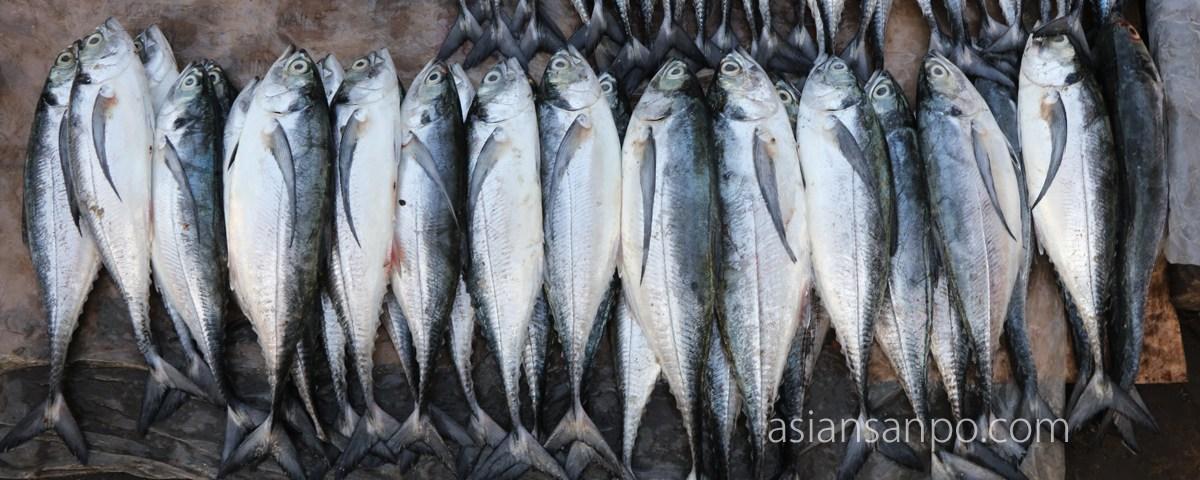 ミャンマー シットウェ 市場