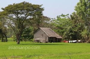 ミャンマー パテイン 川 デルタ