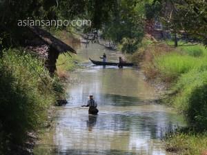 ミャンマー パテイン-バゴー 魚捕り