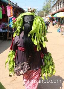 ミャンマー タム インド国境 大豆
