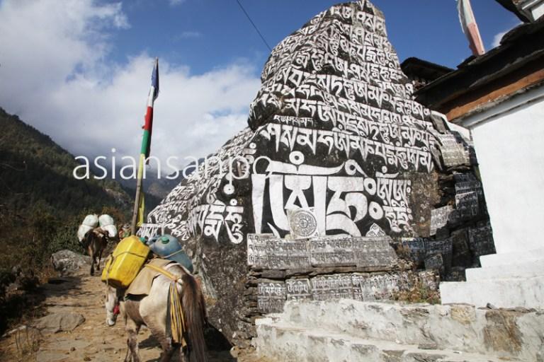 ネパール エベレスト街道 ガット