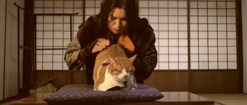 movie, preview, neko samurai, nekonin