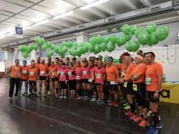 Duża grupa pacemakerów półmaratonu Garda