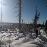 zimowy szlak naRomankę, śnieg isłońce