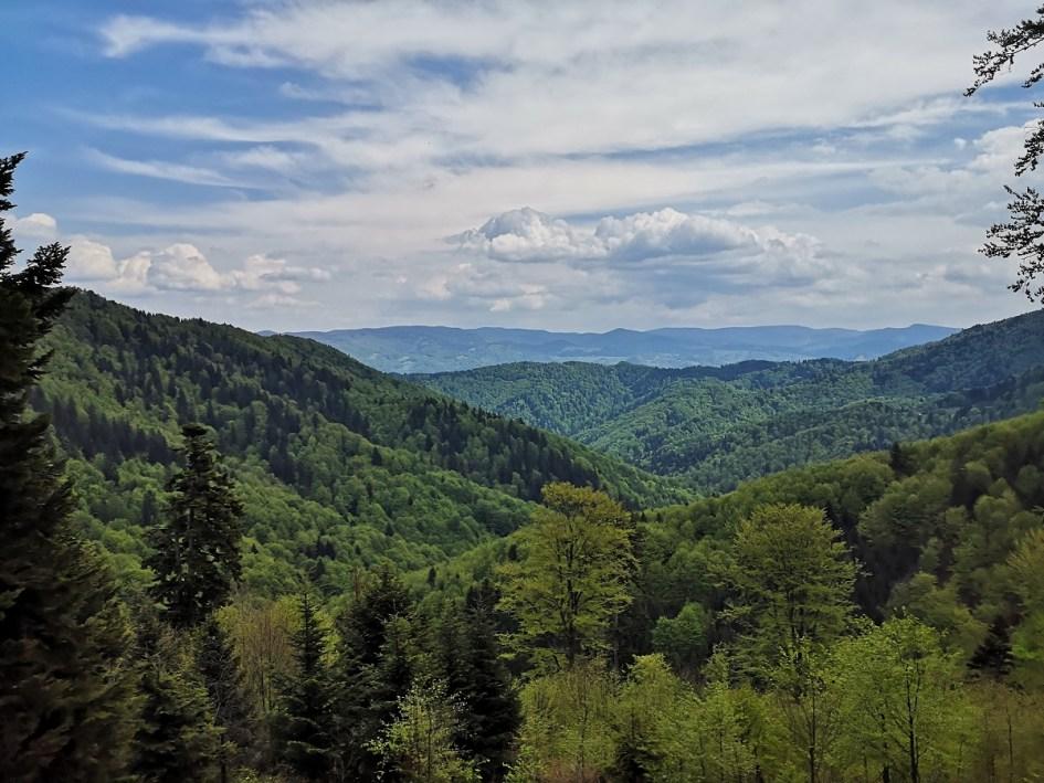 Beskid Sądecki, panorama gór