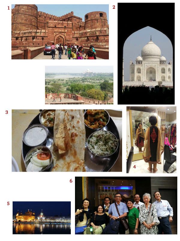 The India adventures by Sarjit Kaur and her siblings. 1. Agra Fort. 2. Taj Mahal. 3. Vegetarian thali meal. 4. Shopping therapy, with complimentary hot-piping chaa. 5. The ever serene Darbar Sahib in Amritsar. 6. My siblings.