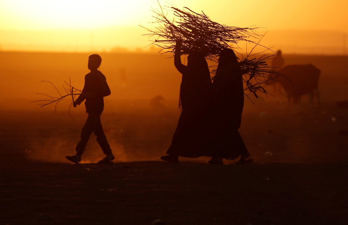 People displaced by fighting in and around Mosul carry a firewood at a boundary of Kurdish territory near Bashiqa, Iraq, November 18, 2016. Photo: Reuters/Goran Tomasevic