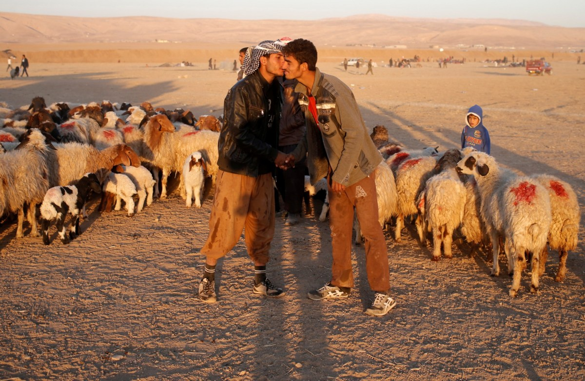 Men displaced by fighting in and around Mosul greets each other at a boundary of Kurdish territory near Bashiqa, Iraq, November 18, 2016. Photo: Reuters/Goran Tomasevic