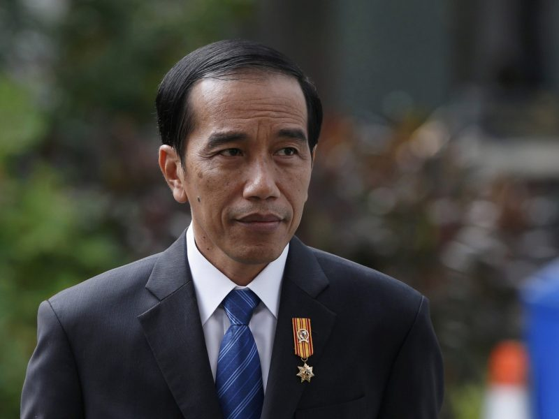 Indonesian President Joko Widodo is pictured at the presidential palace in Jakarta, Indonesia November 3, 2015. Photo: Beawiharta