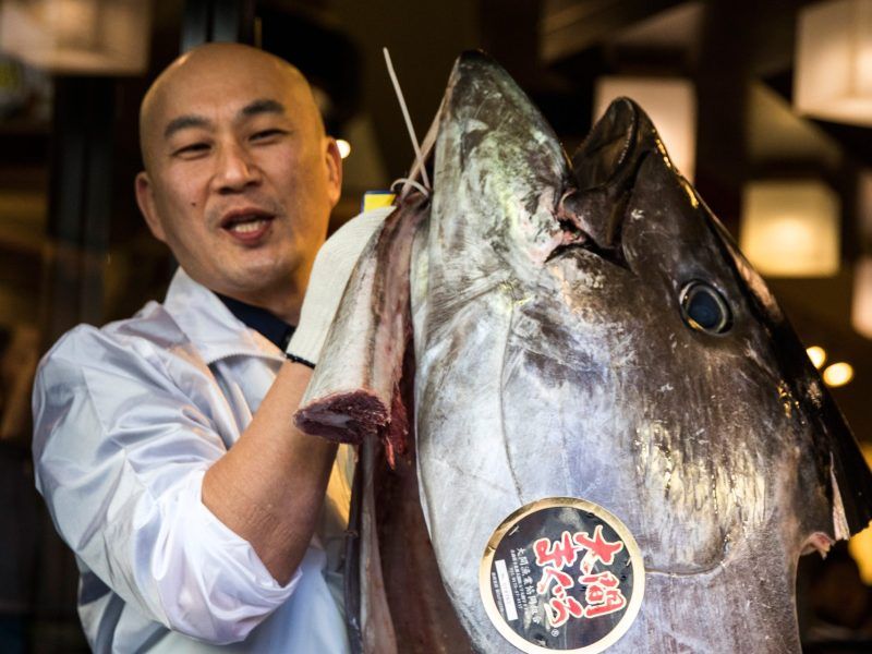 An employee of restaurant chain Sushi-Zanmai holds the head of a 212-kilogram bluefin tuna near the Tsukiji fish market in Tokyo on January 5, 2017. Photo: AFP/Behrouz Mehri
