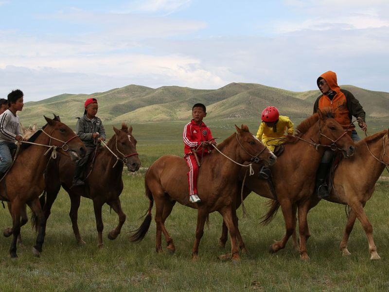 Mongolian citizens are donating horses so the government can pay its debt to bondholders. Photo: Wikimedia Commons