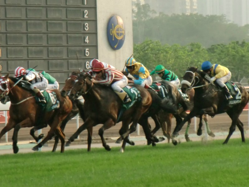 Horse racing in Hong Kong Photo: Wikimedia Commons