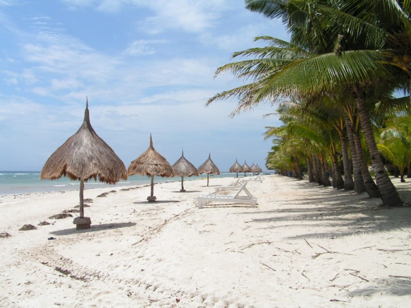 Bohol beach is usually a picture perfect holiday destination. Photo: Wikimedia Commons