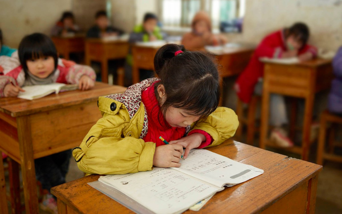 Education reforms should soon get away from rote learning and encourage more reading. Photo: iStock