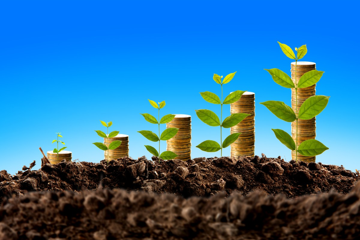 Asia is finally catching on to green funds. Photo: iStock