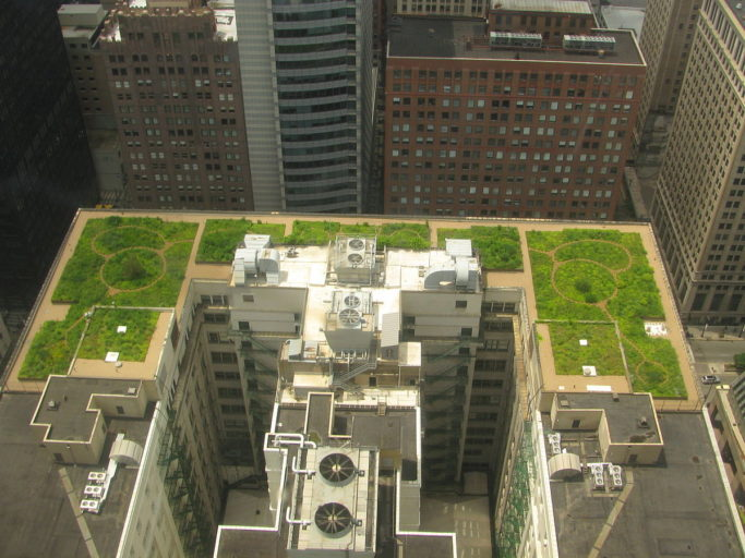 Green roof of City Hall in Chicago, Illinois. Installing green roofs is one of the adaptation measures that cities can use to lower local temperatures and hence the economic impacts of climate change. Photo: Wikimedia Commons, licensed under CC BY-SA 3.0