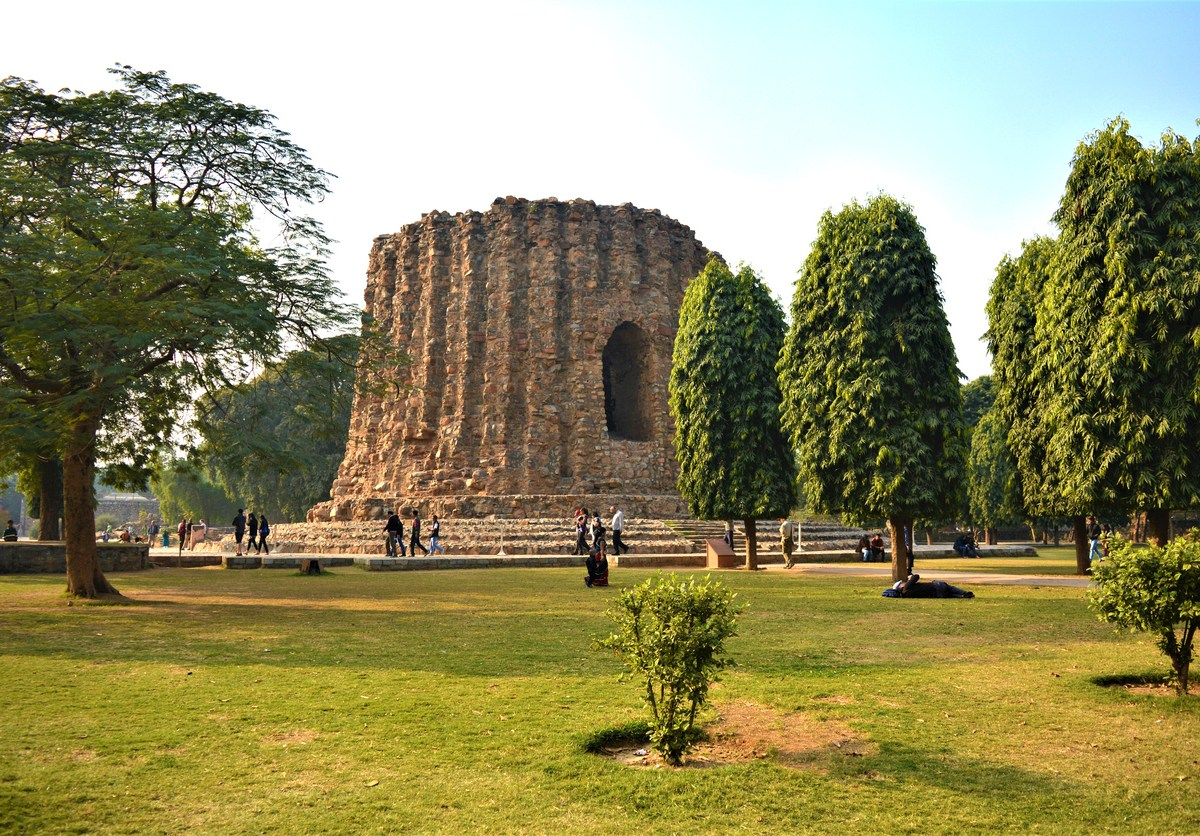 One million trees will be planted across Delhi this year. Photo: iStock