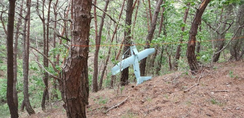 South Korea's Military released a picture of what it said is a North Korean drone in a mountain near the demilitarised zone separating the two Koreas in Inje, South Korea on June 9, 2017. Photo: Defence Ministry /News1 via REUTERS