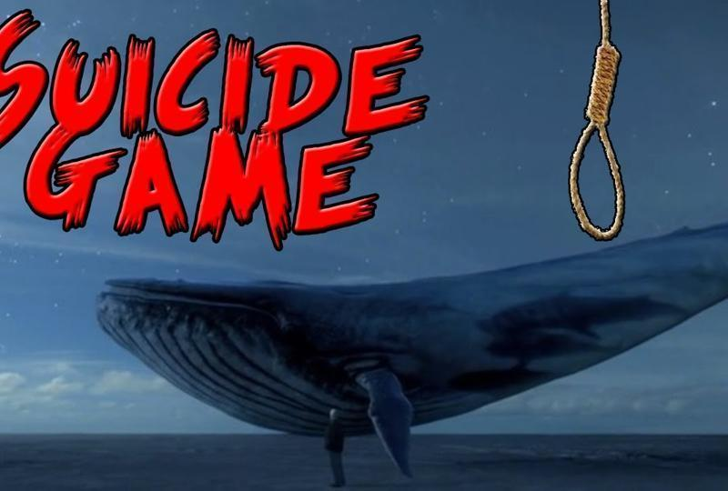The Blue Whale online game has been banned in India. Image: Hindustan Times