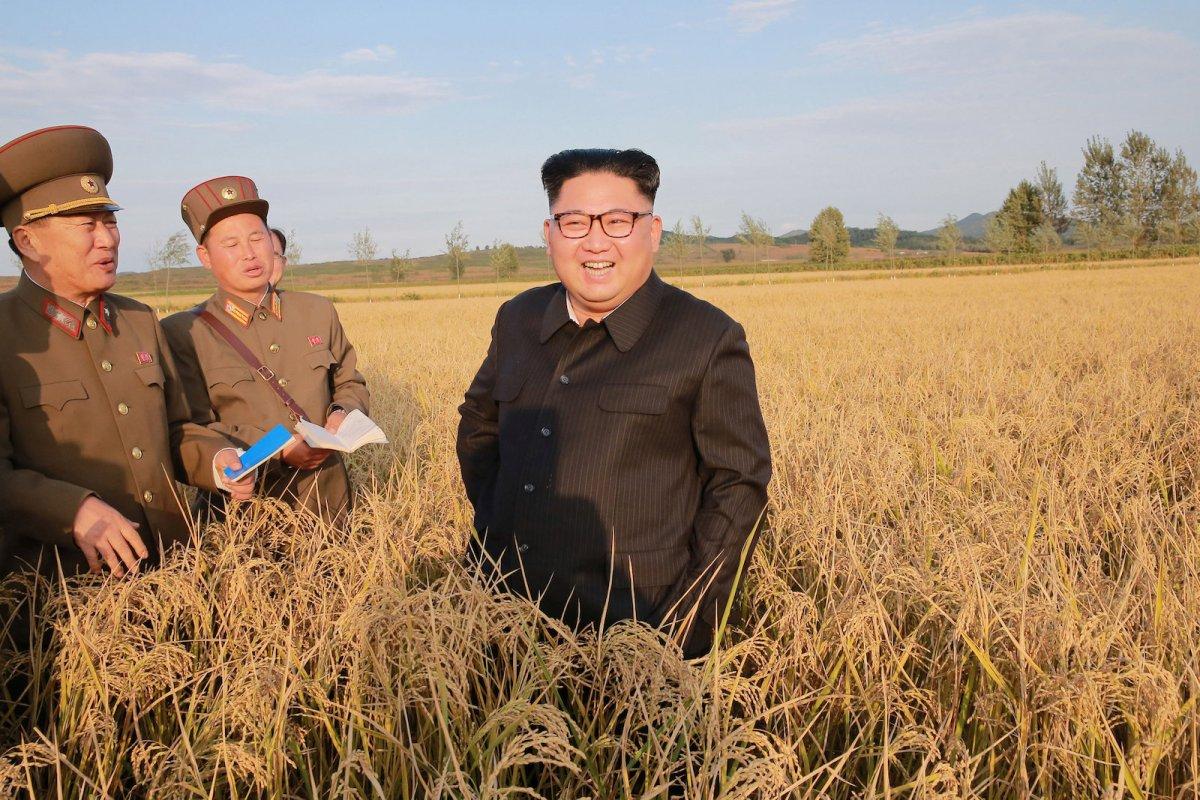 North Korean leader Kim Jong Un visiting Farm No. 1116 of KPA Unit 810 in September. KCNA/via Reuters