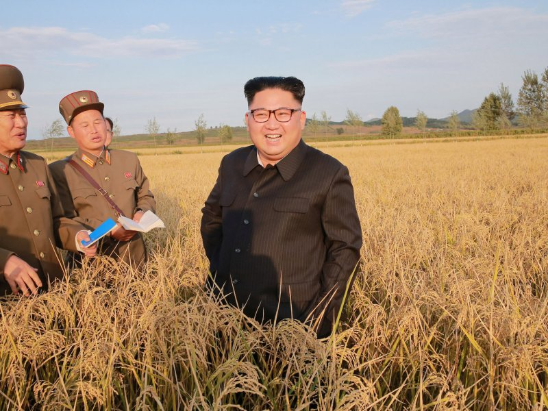 North Korean leader Kim Jong Un visiting Farm No. 1116 of KPA Unit 810 in September. KCNA/via Reuters
