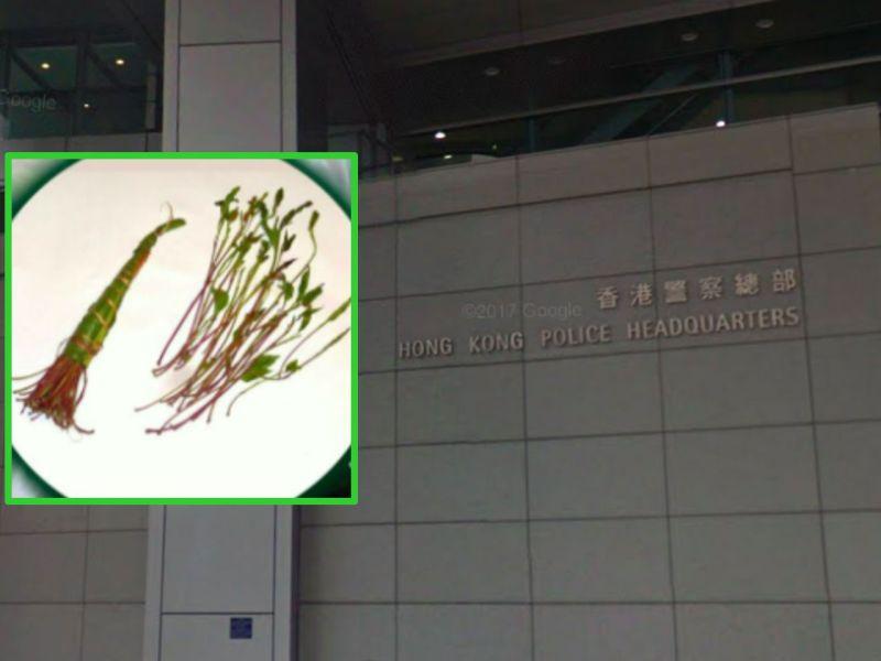 Khat leaves (inset). Photo: Google Maps, Facebook, HK Police