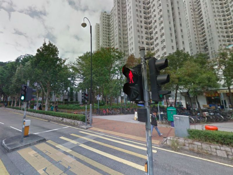 Fanling in the New Territories. Photo: Google Maps