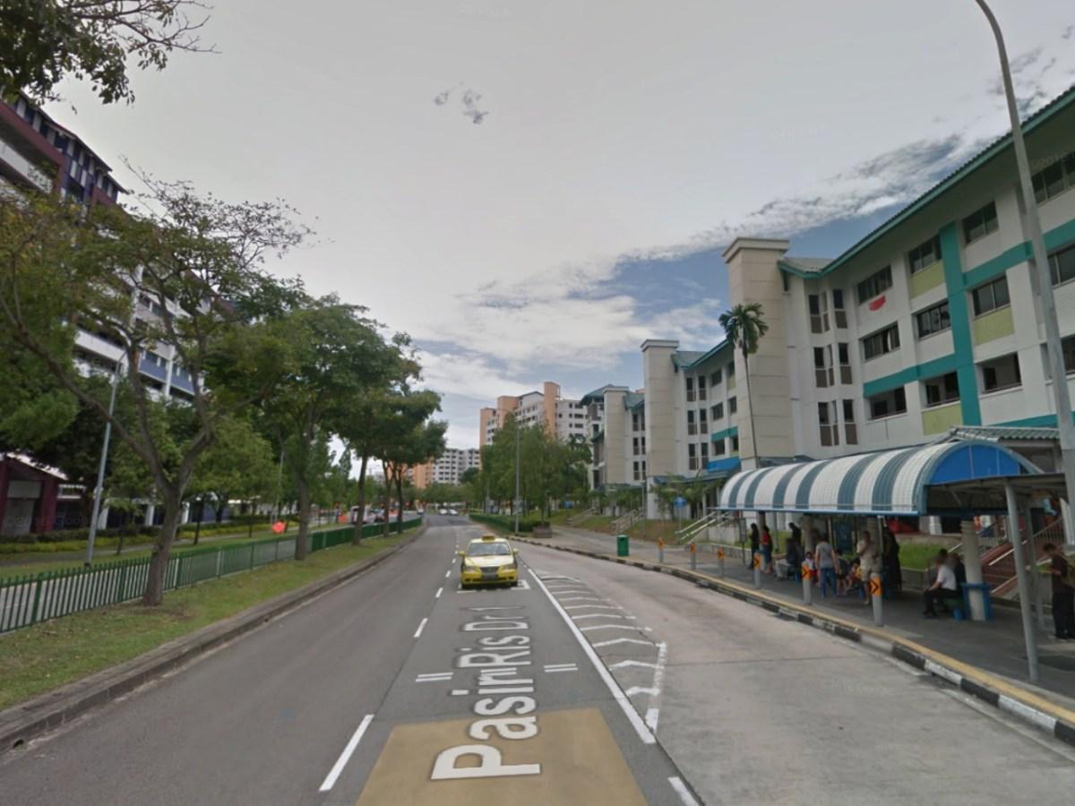 HDB Estates in Pasir Ris, Singapore. Photo: Google Maps