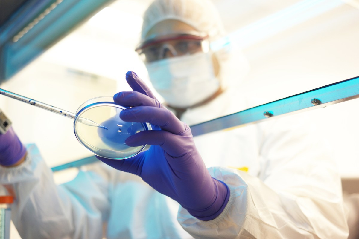North Korea has moved to acquire tools that could be used for a bioweapons program, from factories to create microbes, to laboratories and staff with modern skills, intelligence agents say. Photo: iStock