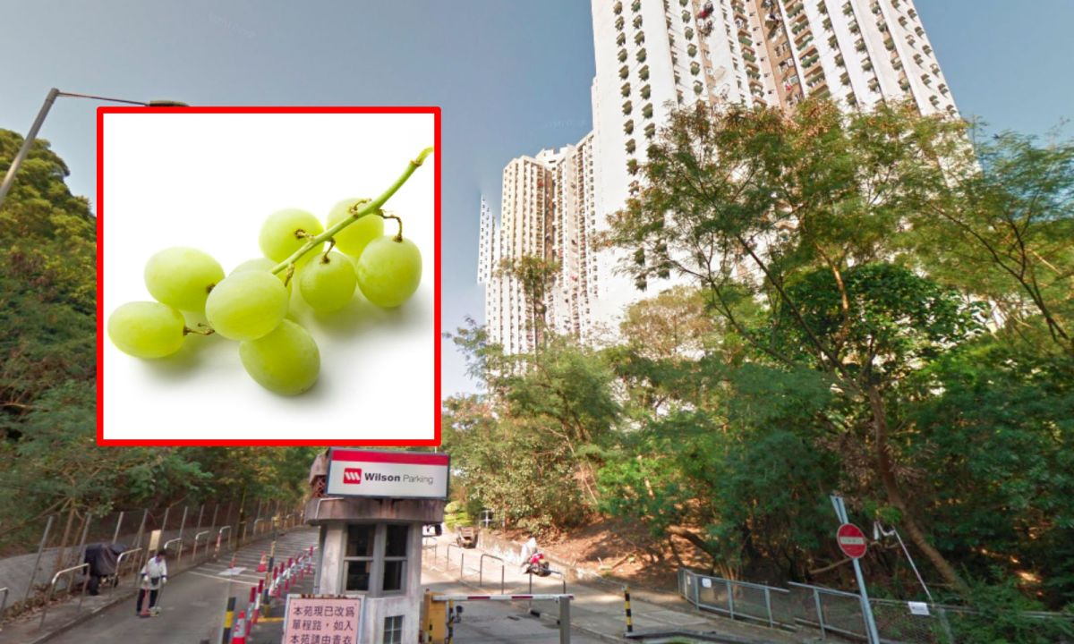 Tsing Yi in the New Territories was where a young girl choked and died after eating a grape. Photos: Google Maps / iStockphoto