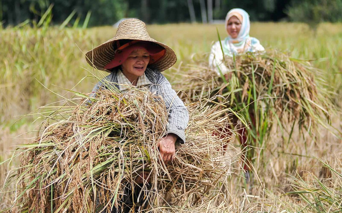 The children of migrant Indonesian plantation workers in Sabah are not eligible for Malaysian citizenship. Photo: iStock