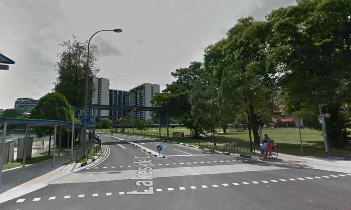 The neighborhood where the incident happened on Lakeside Drive in Singapore. Photo: Google Maps