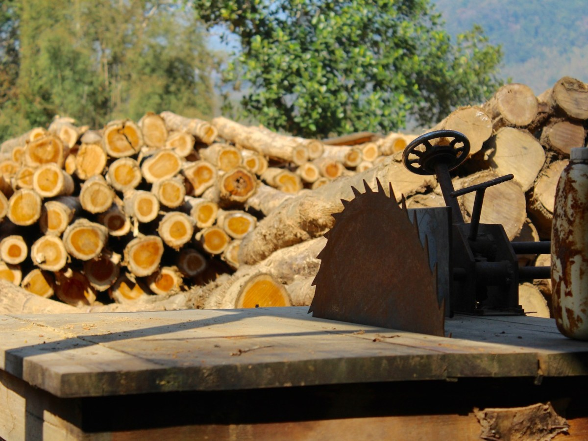 Rampant corruption in countries throughout the Greater Mekong region has put vast areas of forest at risk. WWF says more sophisticated forest policies are needed. Photo: WWF