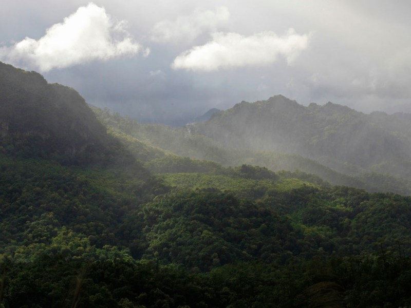 Thailand's Western Forest complex, made up of 19 national parks and wildlife sanctuaries, is one of the largest protected areas in Southeast Asia. But WWF warns that these areas are at risk if countries in the Greater Mekong region don't work harder to protect them. Photo: WWF/ Adam Oswell