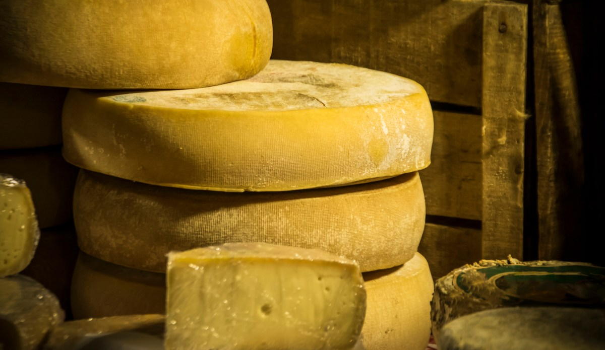 Cheese may have had a special status among foodstuffs. Photo: iStock