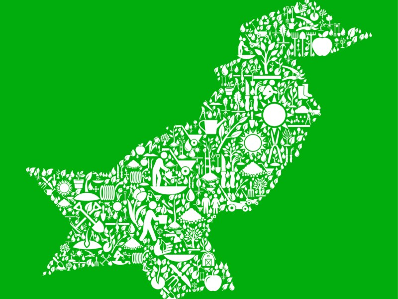 Pakistan Garden and Gardening Vector Icon Pattern. Image: iStock