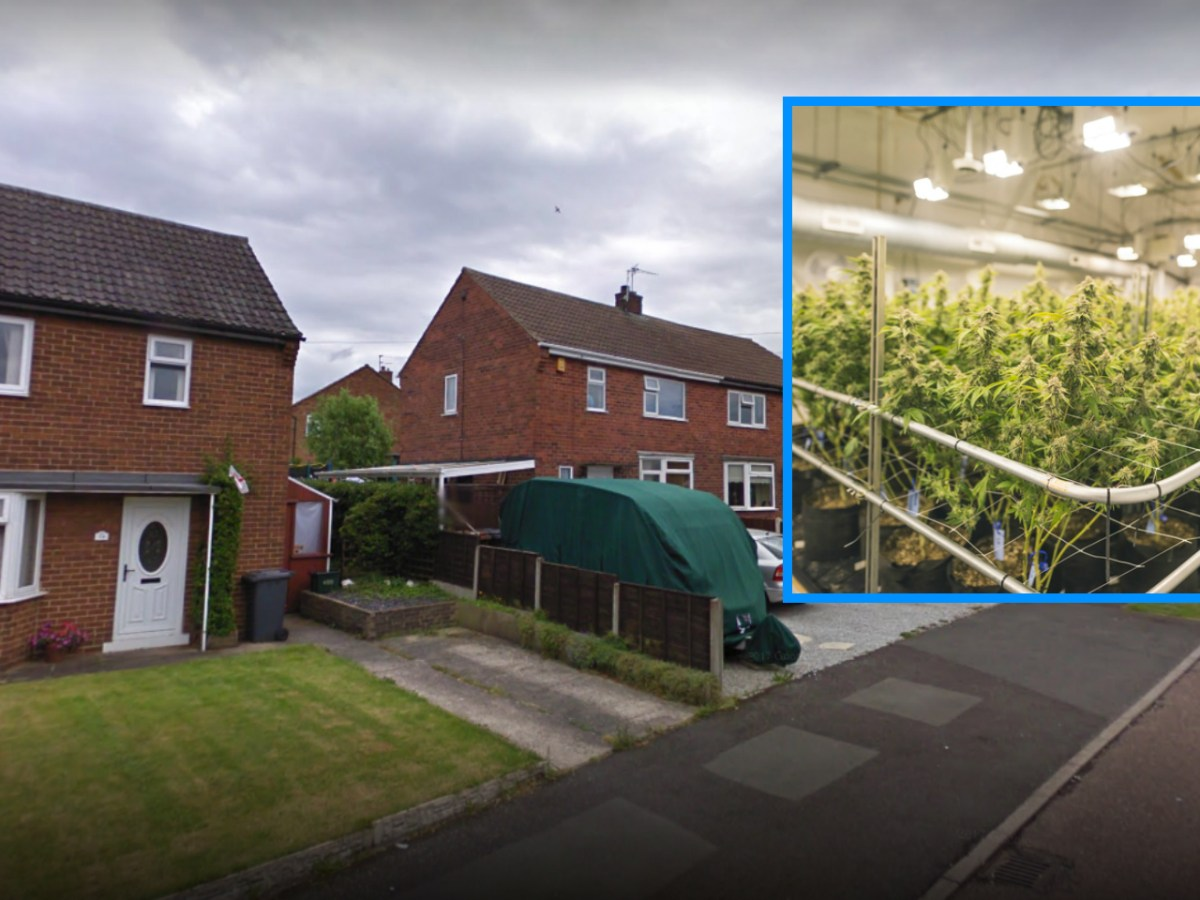 The British Home Office will decide if the two men will be deported for cannabis they grew in Derbyshire in England. Photo: Google Maps / Inset: iStock.