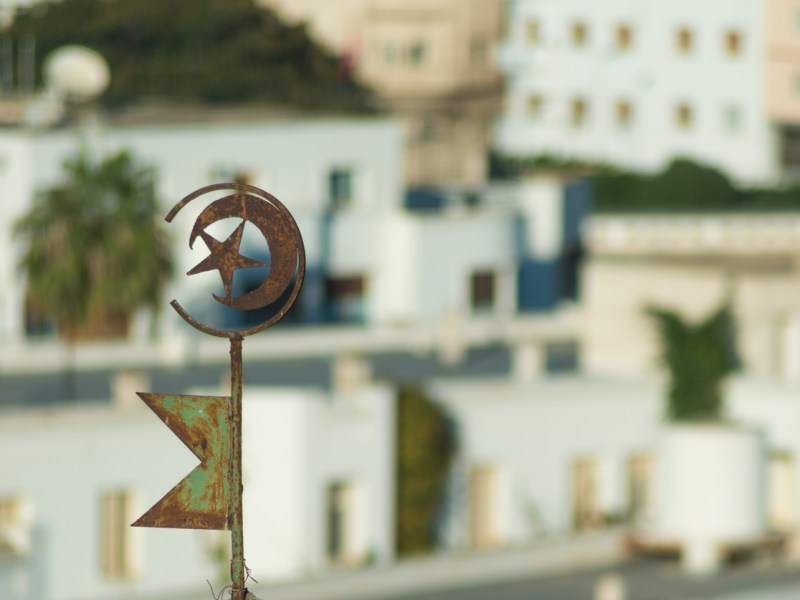 Symbol of Tunisia with Buildlings in Background. Photo: iStock