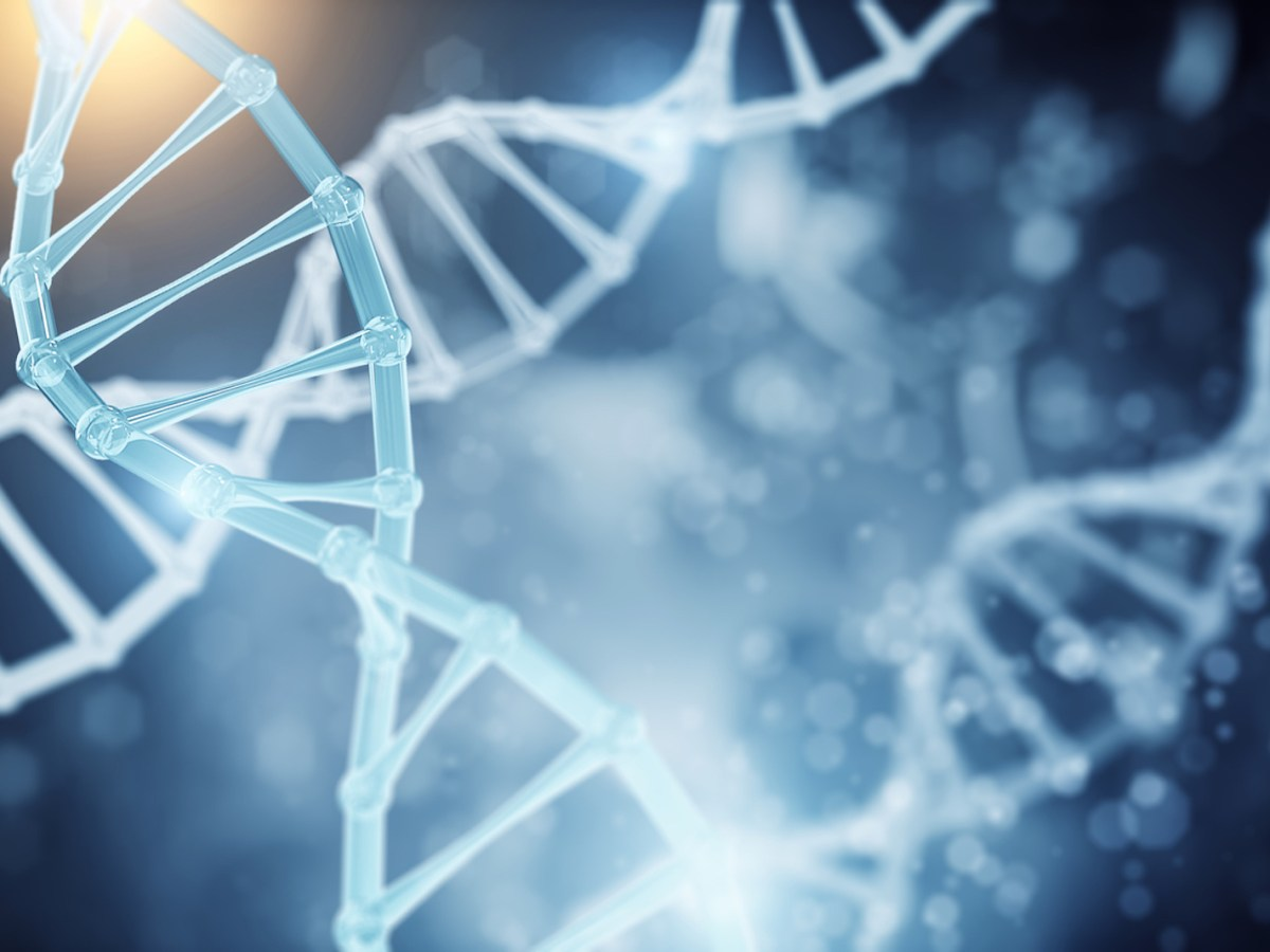 DNA strands are the building blocks of life. Photo: iStock