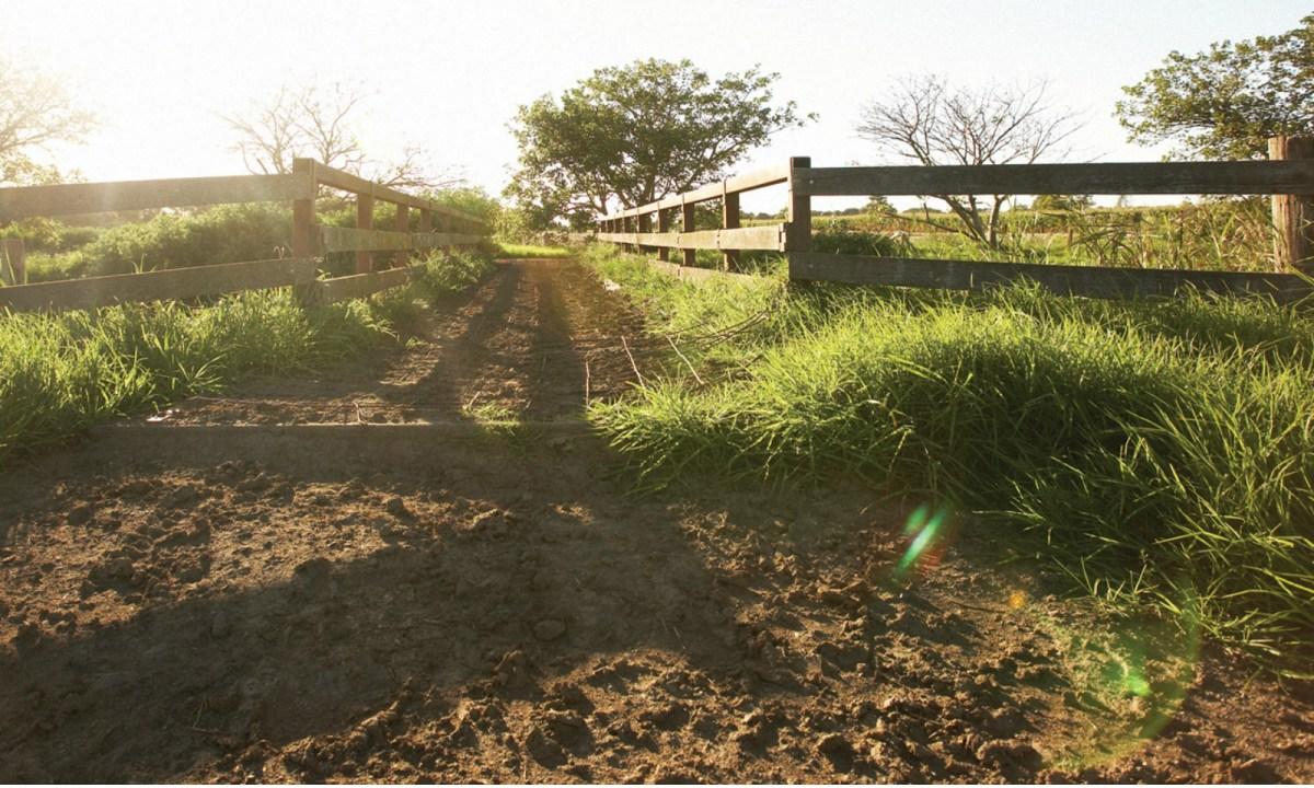 The entrance to a farm in Australia. Photo: Wikimedia Commons
