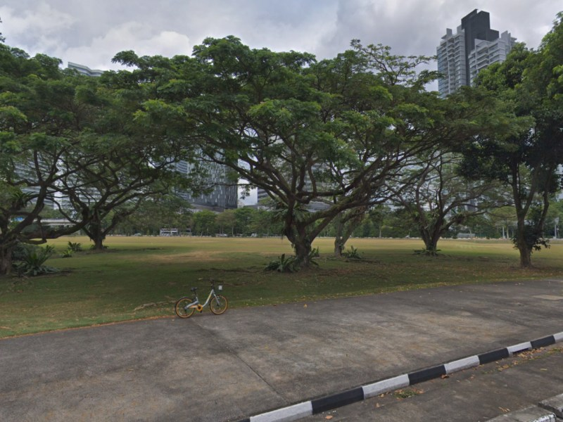 The park on Republic Avenue, Singapore. Photo: Google Maps