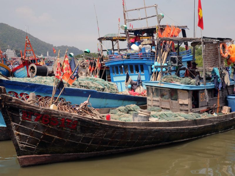 Vietnamese fishing boats. Photo: AFP