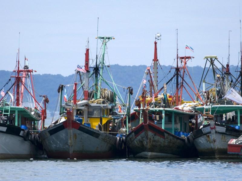 Fishing vessels in Malaysia. Photo: iStock.