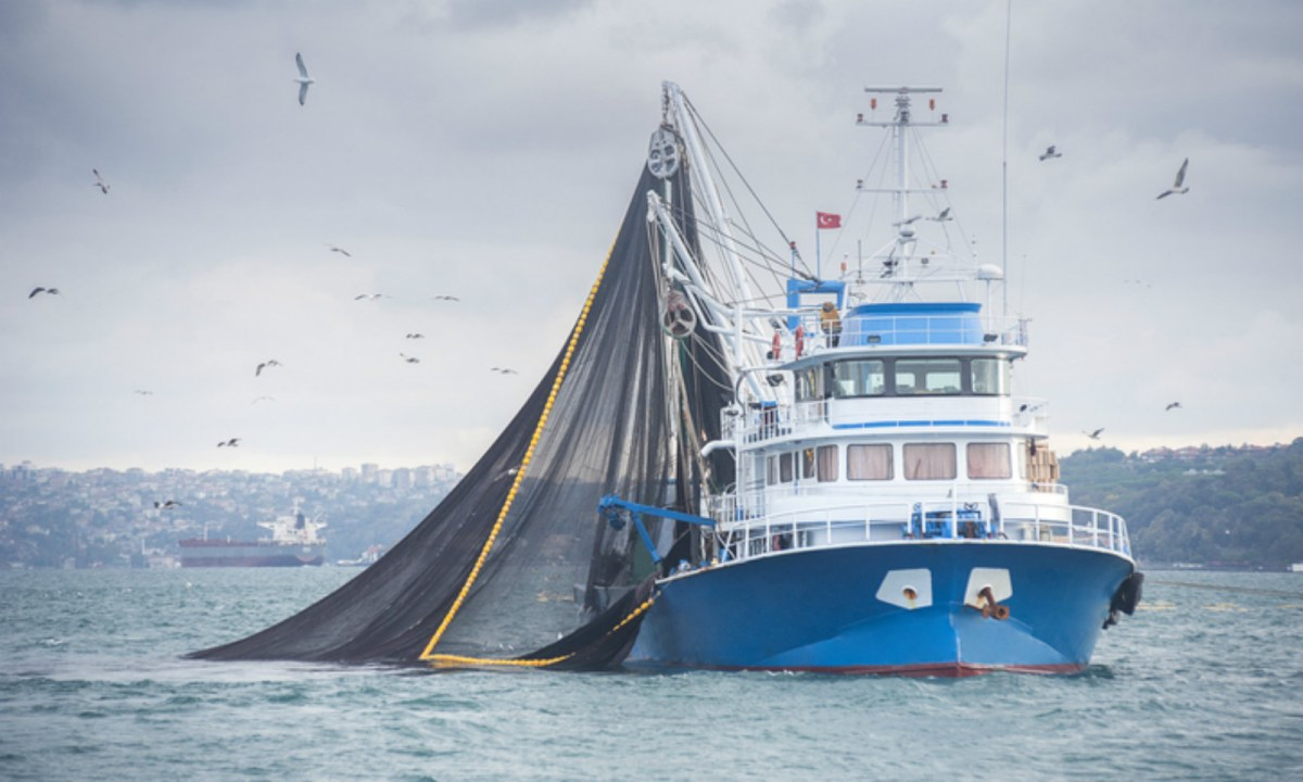 Six Foreign Fishing Boats Detained In Indonesia Asia Times