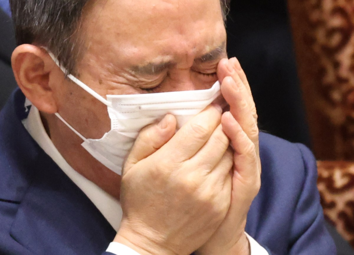 Japan's PM Suga falls on his sword