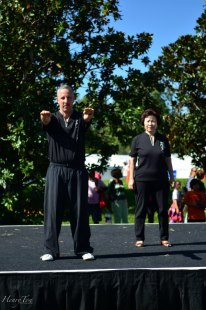 Tai Chi by Sifu Sam Winters
