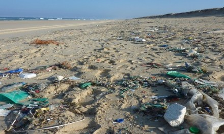 INVISIBLE THREAT OF PLASTIC POLLUTION